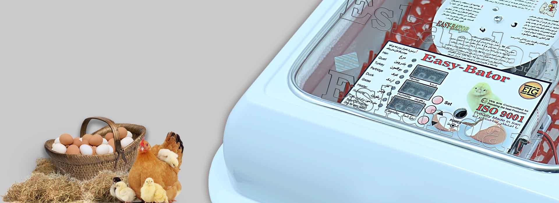 برد هوشمند دستگاه جوجه کشی خانگی