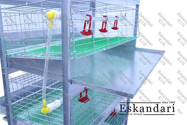 آموزش ساخت قفس مرغ تخمگذار