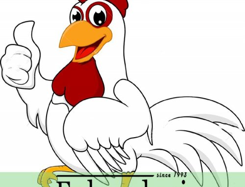 آشنایی با پرورش مرغ