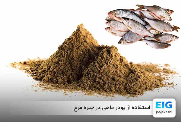 پودر ماهی در جیره غذایی مرغ - سایت جوجه کشی دات کام