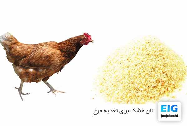 نان خشک برای مرغ خانگی - سایت جوجه کشی دات کام