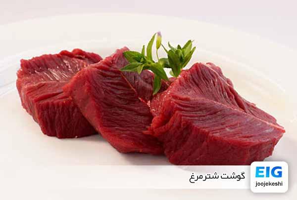 گوشت، پوست، پر و روغن شتر مرغ - جوجه کشی دات کام