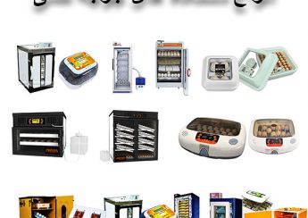 مقاله انواع دستگاه های جوجه کشی صنعتی و خانگی