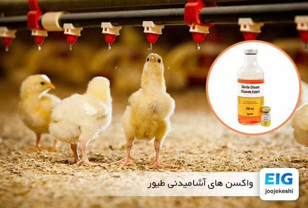 واکسن های محلول در آب مخصوص طیور - سایت جوجه کشی دات کام