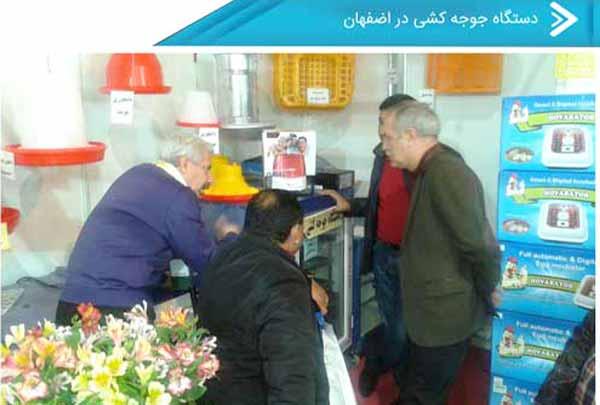 خرید دستگاه جوجه کشی در اصفهان - سایت جوجه کشی دات کام