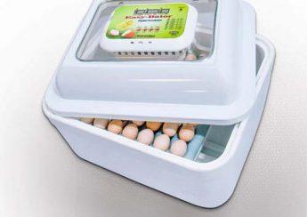 دستگاه جوجه کشی خانگی اتوماتیک