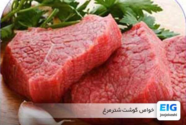 گوشت شترمرغ و خواص مفید آن - جوجه کشی دات کام