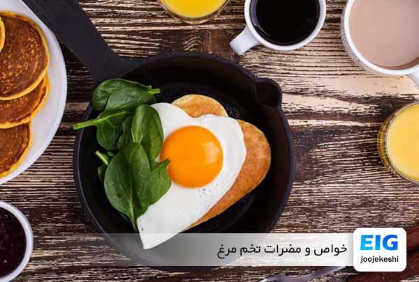 تخم مرغ چه خواصی دارد؟