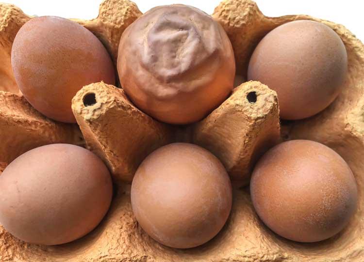 تخم مرغ غیرطبیعی