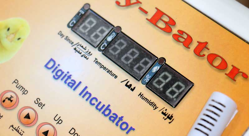 مجهز بودن دستگاه جوجه کشی حرفه ای 40 تایی به نمایشگر دیجیتالی