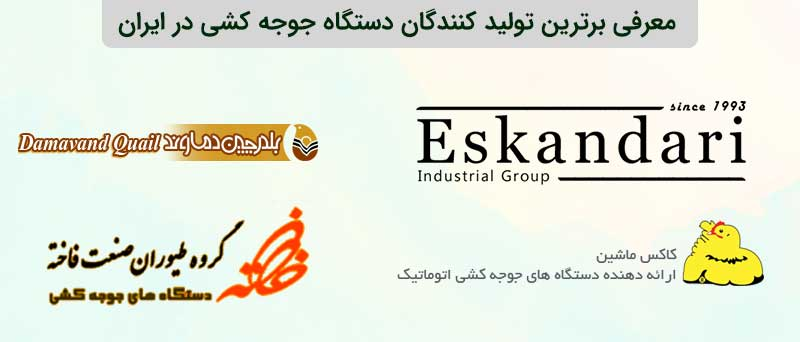 بزرگترین تولیدکنندگان دستگاه جوجه کشی در ایران
