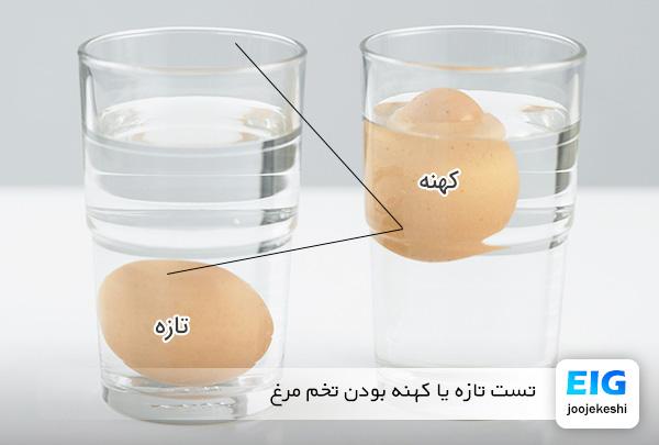 تشخیص تخم مرغ تازه از کهنه با آب - سایت جوجه کشی دات کام