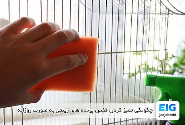 چگونگی تمیز کردن قفس پرنده های زینتی به صورت روزانه - جوجه کشی دات کام
